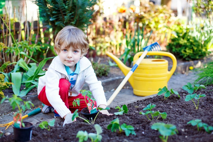 4 Fun Ways to Teach Kids How to Garden