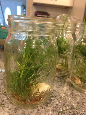 Canning jars with pickling spice