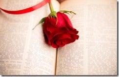 rosebook_thumb