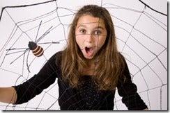 spiderweb_thumb